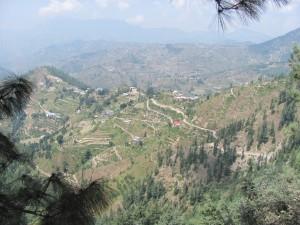 Rampur to Sarahan